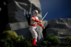 Red & White Storm Shadow