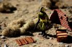 Python Patrol Copperhead